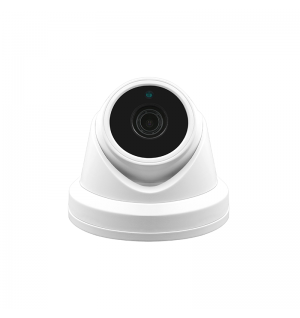 Full HD1080P Audio Turret Dome Camera